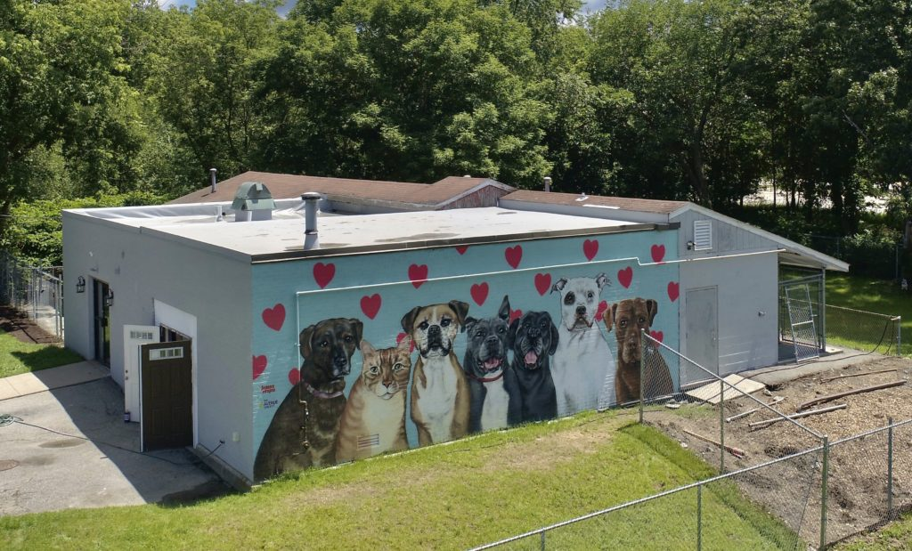 Mural by Joanna Vespia at the New England Humane Society